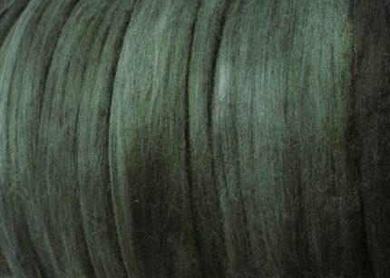 mtsol.bluegum1.crop.cc1762 (Custom)