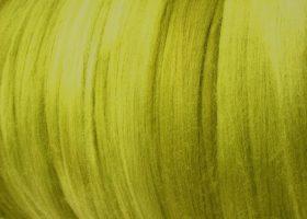 mtsol.wasabi1.crop.cc1822 (Custom)