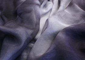 tissueharm.silverback.cropped.cc688 (Custom)
