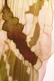 NancyBallesteros.Silk.Wool.Paper2.sideimage.0994
