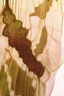 NancyBallesteros.Silk.Wool.Paper2.sideimage.0994